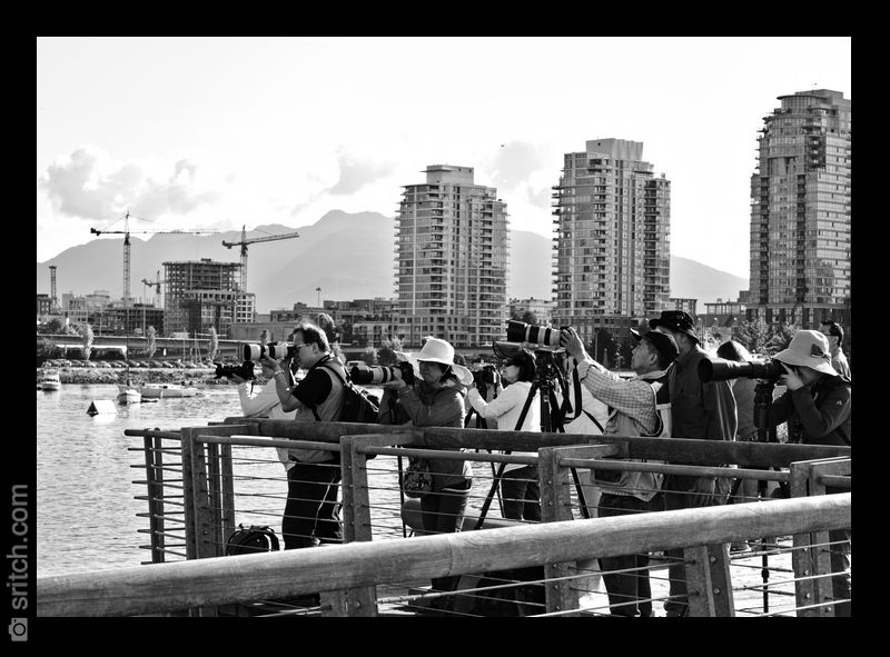 A bunch of people taking photos of people rowing