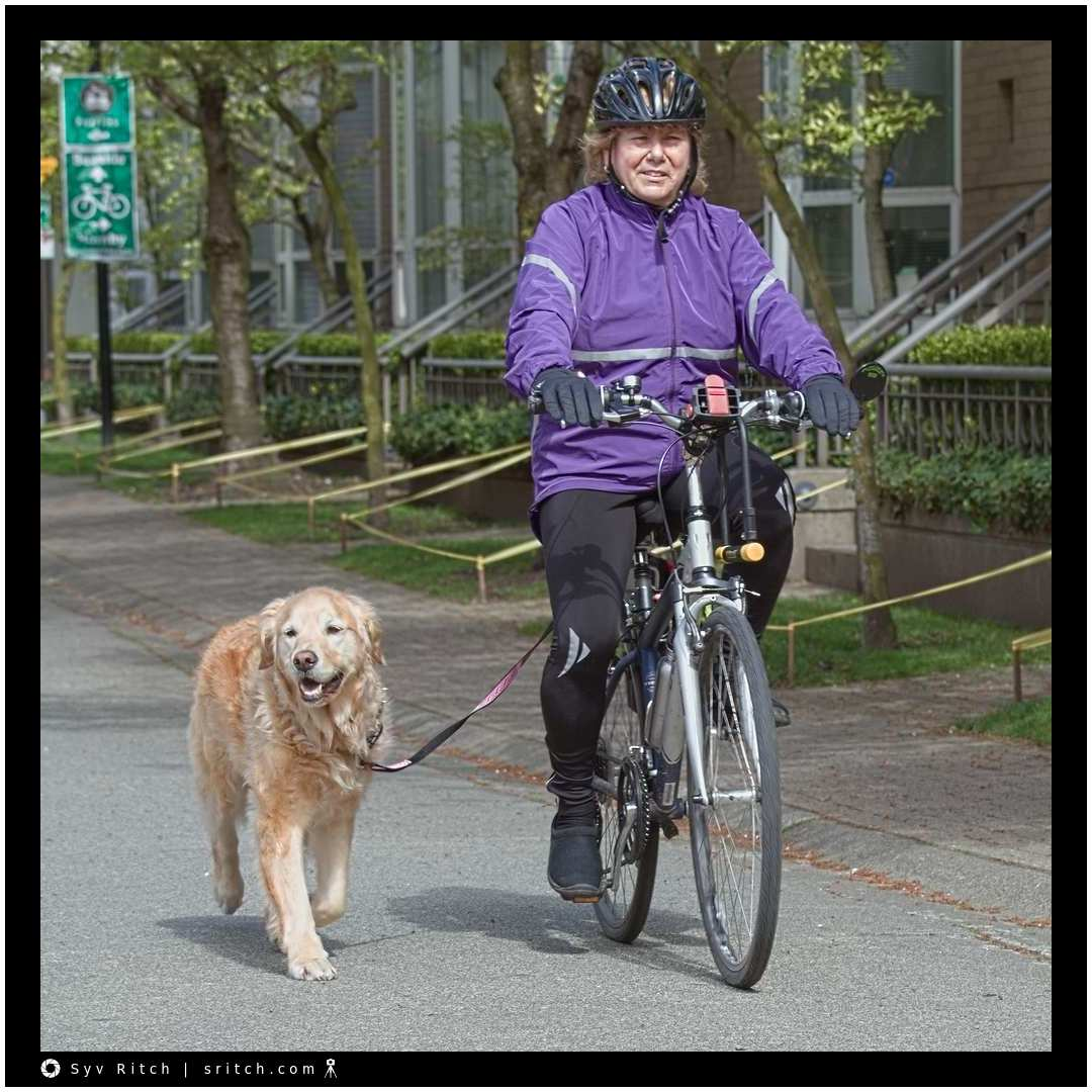 Dogs and Bicycles: Vancouver, BC
