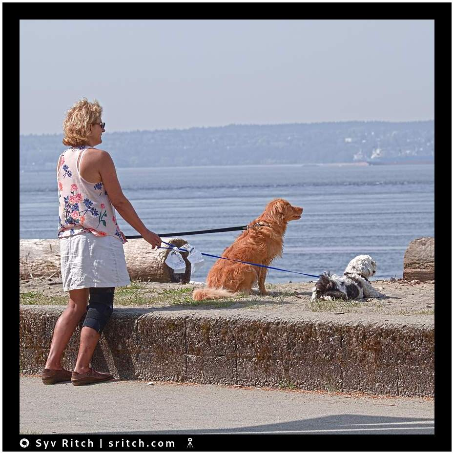 Woman and her 2 dogs daydreaming and staring at the sea