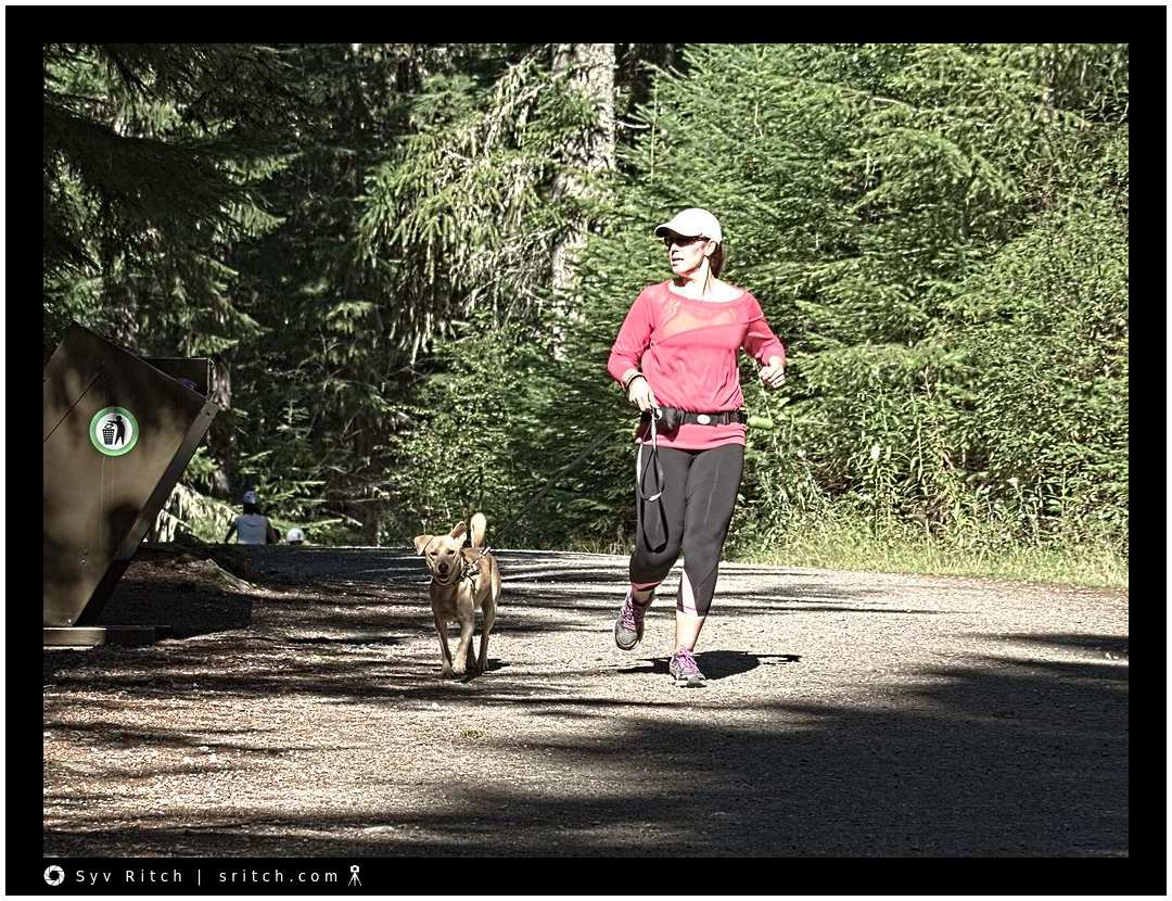 Jogging with a dog through the forest
