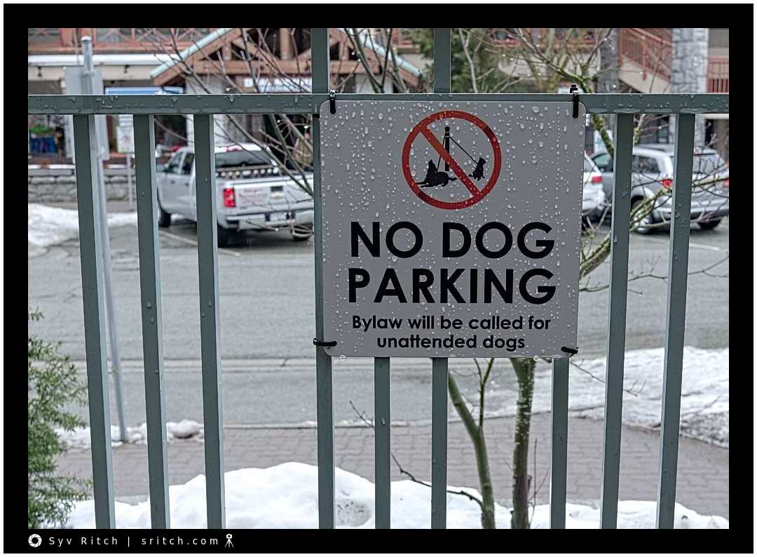 No 'dog parking' sign in Whistler, BC