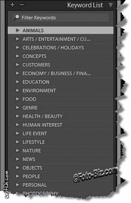 "Screen capture of the Lightroom keywords database."" alt=""Screen capture of the Lightroom keywords database"