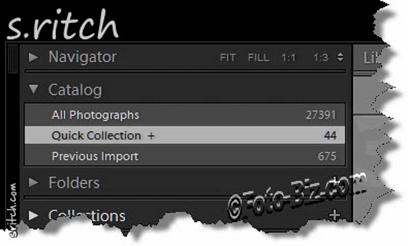 Screen capture of Lightroom: Quick Collection panel