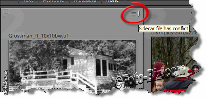 Lightroom Sidecar Problem