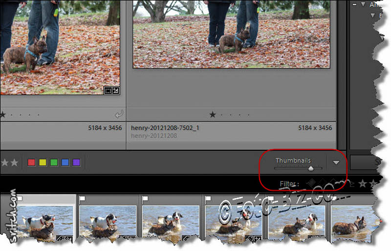 Lightroom: slider to adjust the thumbnail sizes