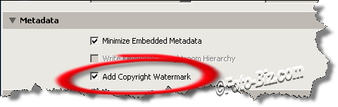 Lightroom: Add Copyright Watermark