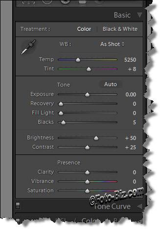 Lightroom: Develop Module Basic Panel