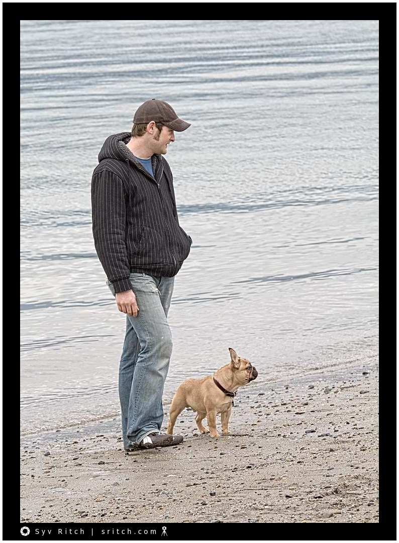 Frenchie at the Beach: Vancouver, BC